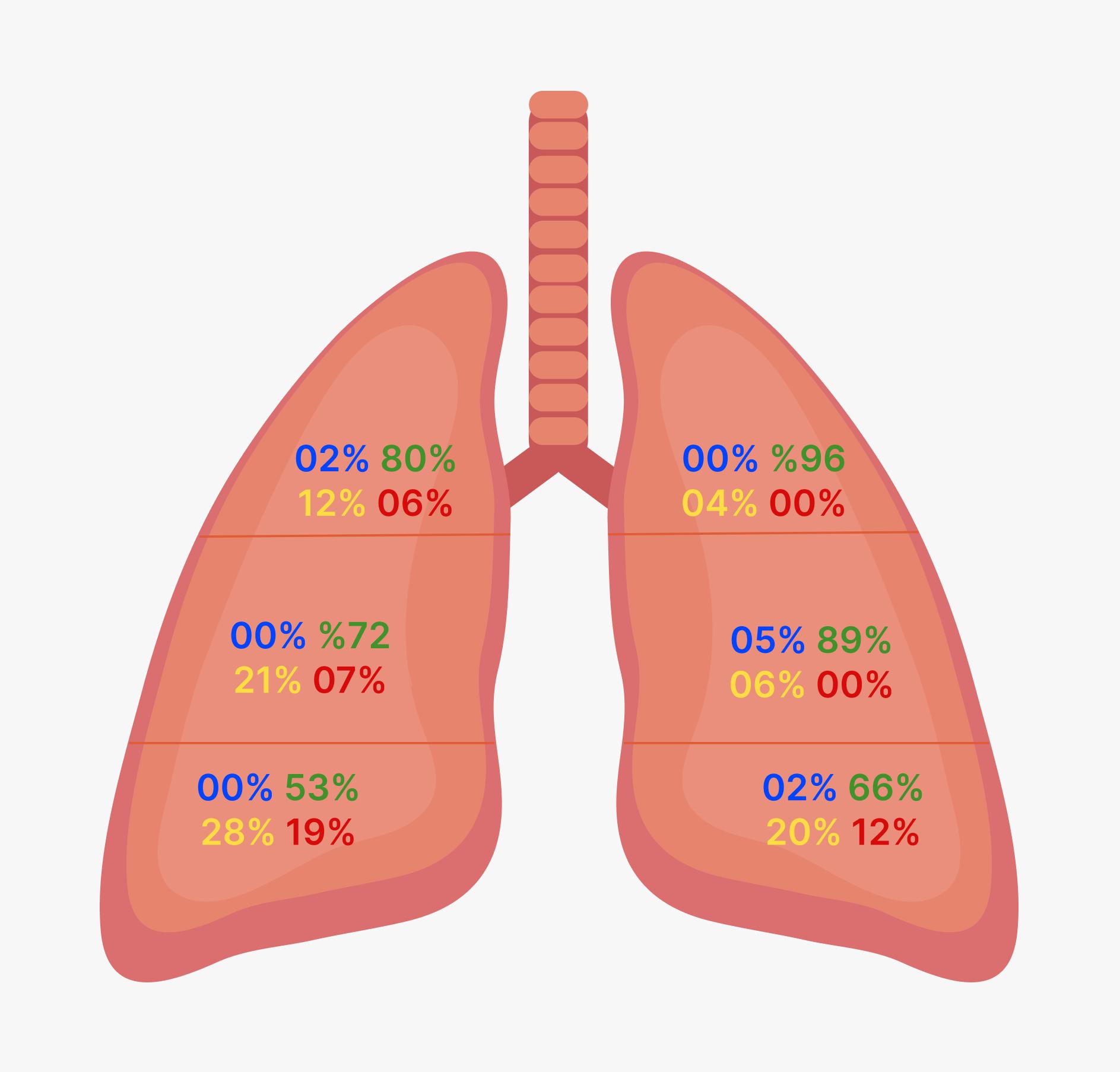 Aeração pulmonar por região